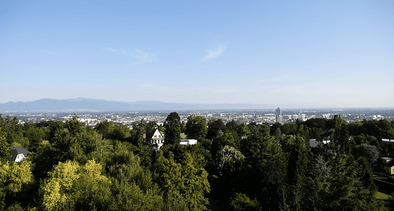 Mulhouse vue du haut, vue sur les Vosges_arbres